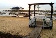 刁曼岛的沙滩